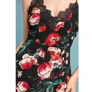 Rose Dress with Lace Trim from Anthropologie